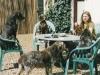 Das richtige Futter trägt im Besonderen zum Wohlbefinden Ihres Hundes bei