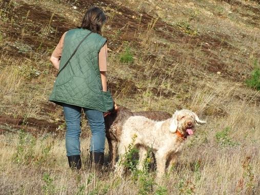Hundeschule070921